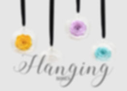 hanging roses collection.jpg