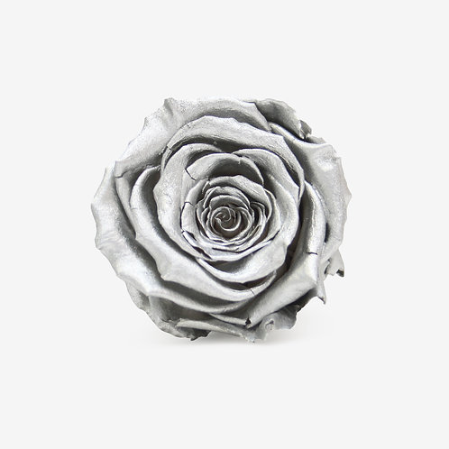 Silver Preserved Infinity Rose That Lasts A Year