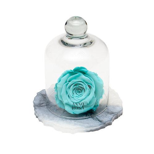 MARBLE BELLE SINGLE INFINITY ROSE - AQUA
