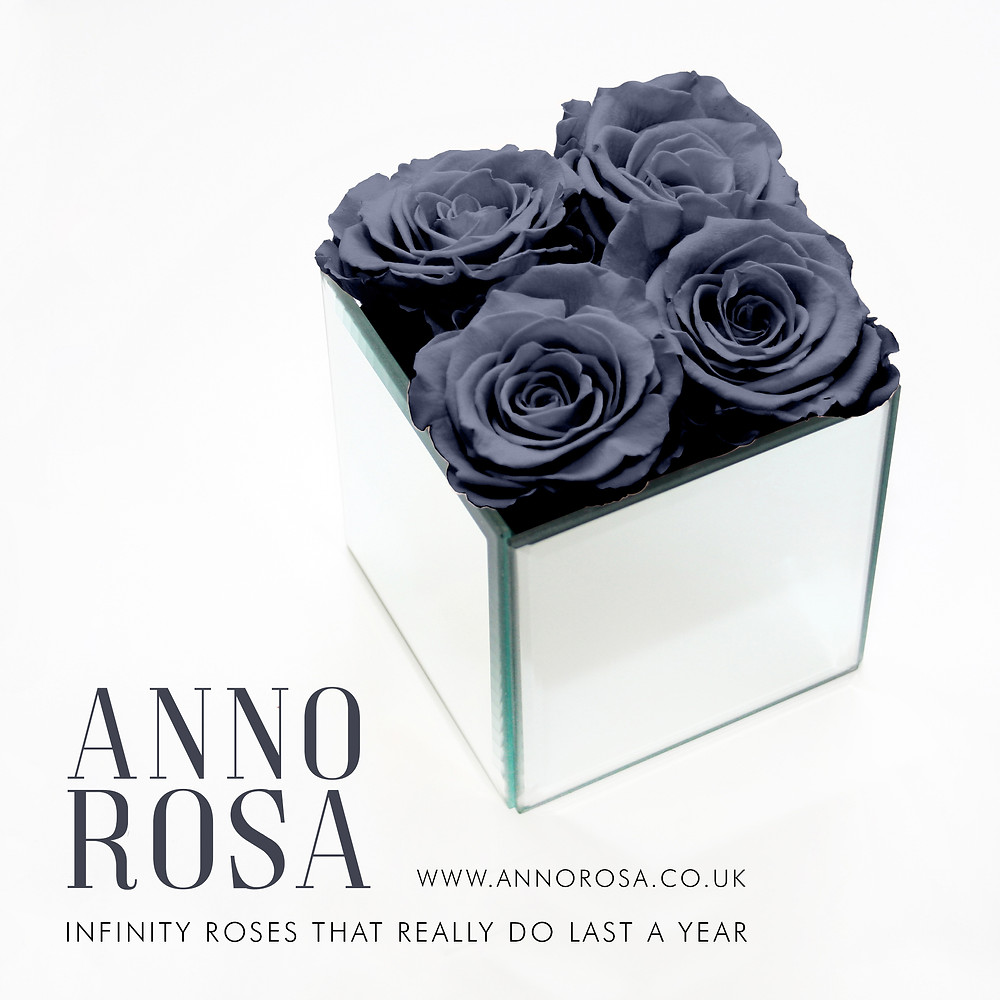 Grey infinity preserved roses that last a whole year from Anno Rosa