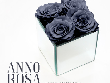Grey Infinity Roses that last a full year...