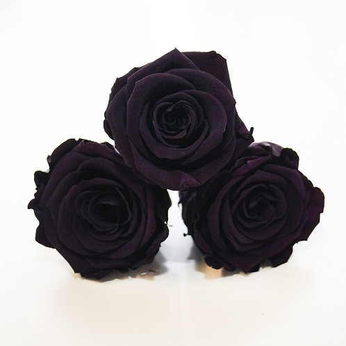 Purple roses that will last a year