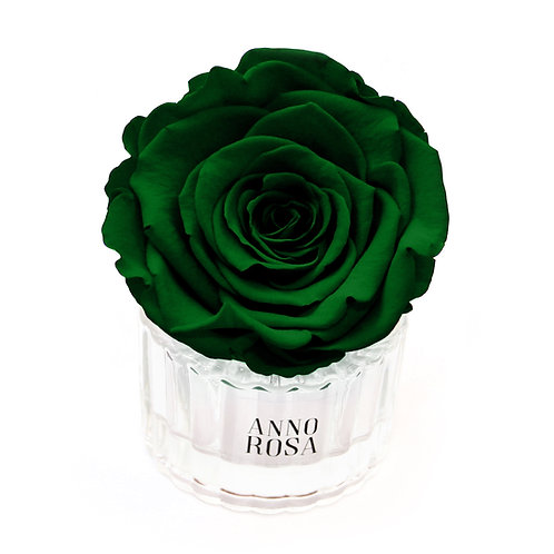 ELEGANT INFINITY ROSE - GREEN