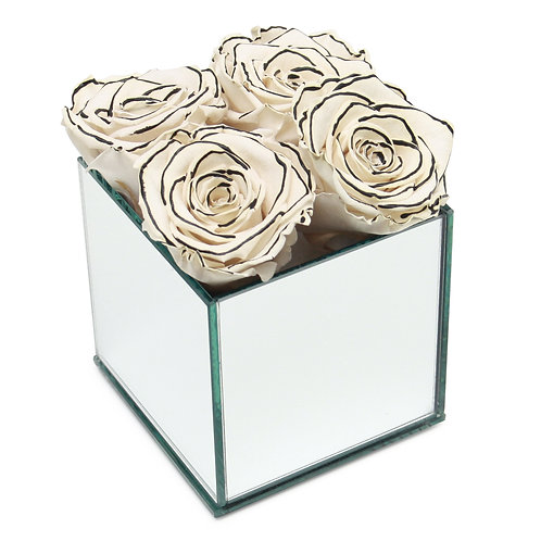 INFINITY ROSE BOX - ZEBRA