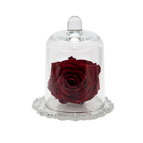 DELUXE WINE DIAMANTE RESIN BELLE SINGLE INFINITY ROSE