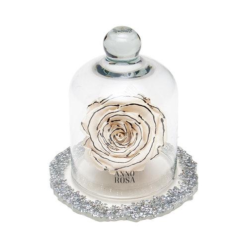 DIAMANTE BELLE SINGLE INFINITY ROSE - ZEBRA