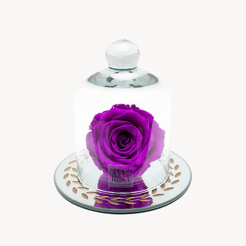 VINTAGE BELLE SINGLE INFINITY ROSE - VIOLET