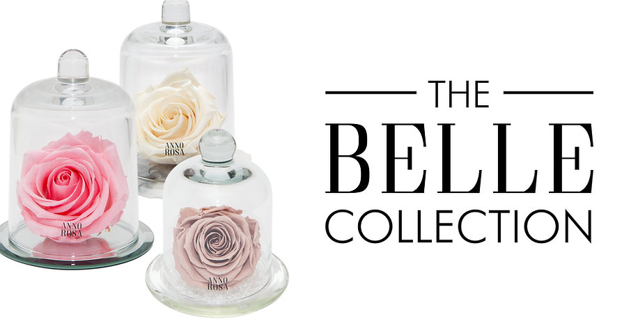 BELLE COLLECTION.jpg