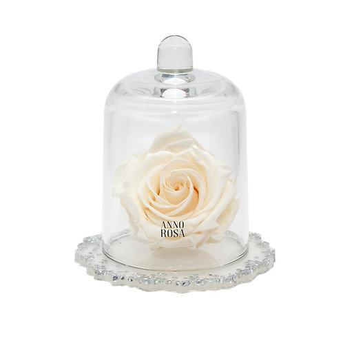 DELUXE CREAM DIAMANTE RESIN BELLE SINGLE INFINITY ROSE