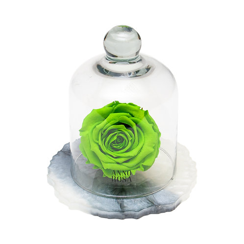 MARBLE BELLE SINGLE INFINITY ROSE - BRIGHT GREEN