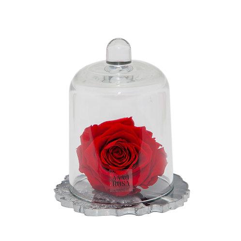 DELUXE RED RESIN BELLE SINGLE INFINITY ROSE