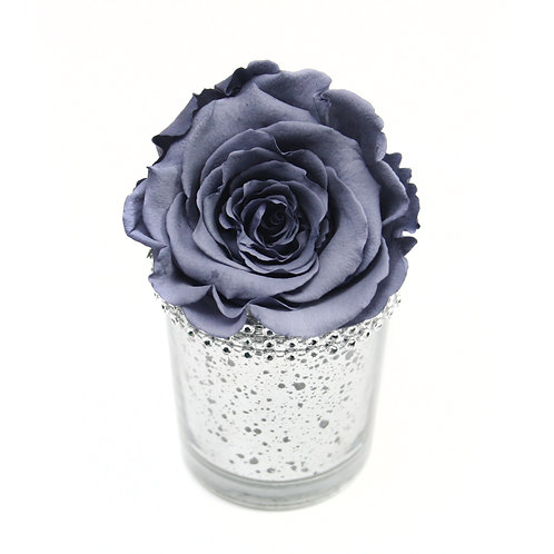 Grey Forever Rose that lasts a year