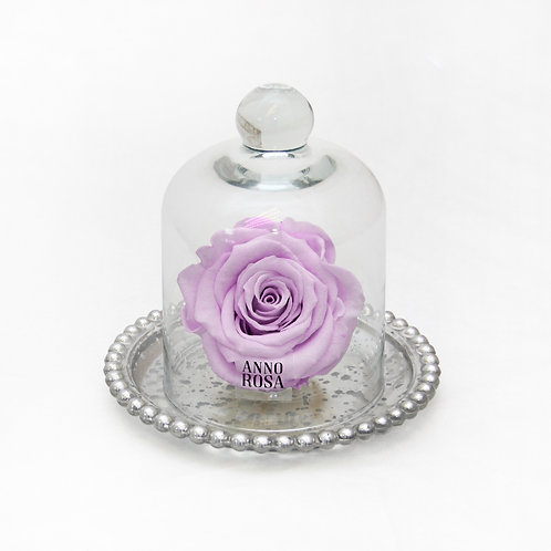 ANTIQUE BELLE SINGLE INFINITY ROSE - LILAC
