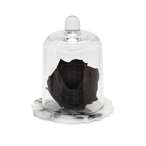 DELUXE BLACK MARBLE RESIN BELLE SINGLE INFINITY ROSE