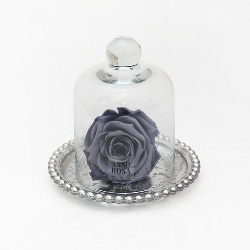 ANTIQUE BELLE SINGLE INFINITY ROSE - GREY