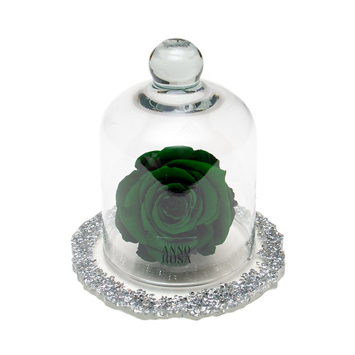 DIAMANTE BELLE SINGLE INFINITY ROSE - GREEN