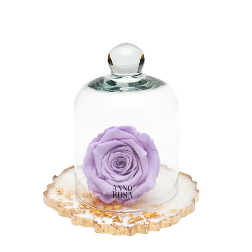 RESIN BELLE SINGLE INFINITY ROSE - LILAC