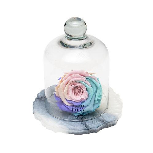 MARBLE BELLE SINGLE INFINITY ROSE - RAINBOW