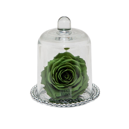 DELUXE SAGE GREEN ANTIQUE BELLE SINGLE INFINITY ROSE
