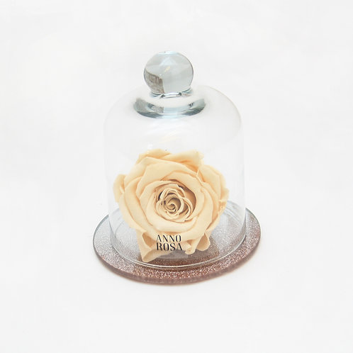Champagne Eternity Rose that lasts for a year