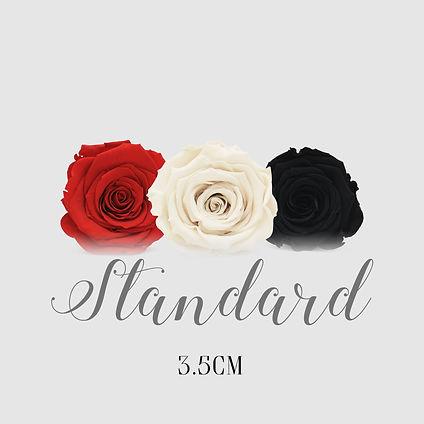 Mix Standard 3.5 Button.jpg
