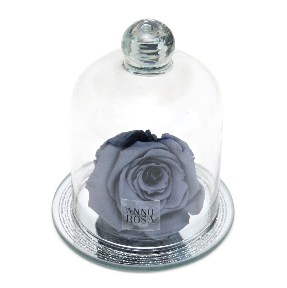 Sparkle Eternity Rose That Lasts A Year
