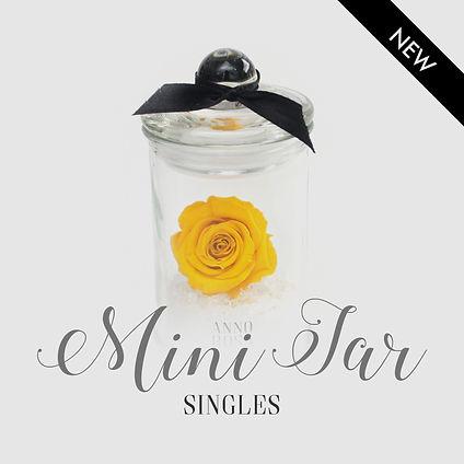category mini jars.jpg
