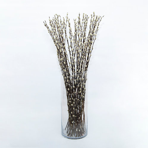 IVORY PUSSY WILLOW (STEMS ONLY NO VASE)