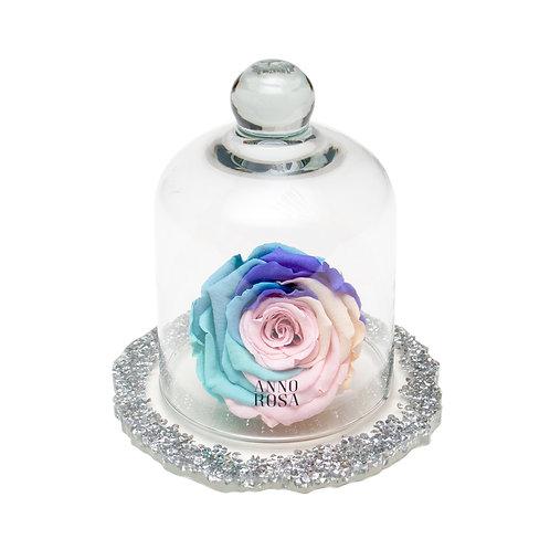 DIAMANTE BELLE SINGLE INFINITY ROSE - RAINBOW