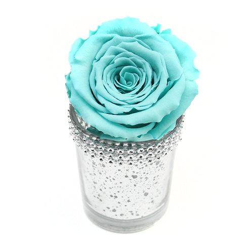 Aqua Infinity Rose that lasts a year