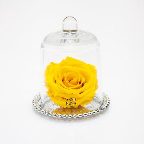 DELUXE YELLOW ANTIQUE BELLE SINGLE INFINITY ROSE