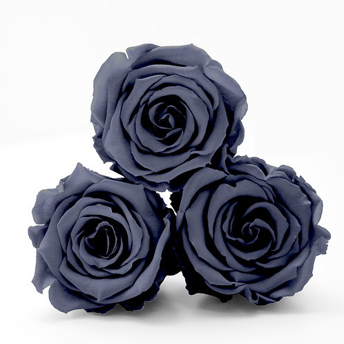 Grey roses that will last a year