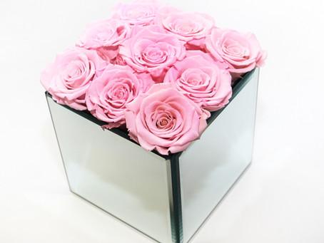 Nine Preserved Roses | Anno Rosa