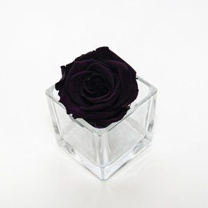 year long roses, infinity roses, forever rose, preserved rose, year long, infinity roses, gift ideas, girls gift ideas, forever roses, infinity roses in purple, winter home decor, winter gifts, christmas gifts, year long roses, forever rose, infinity rose, forever, roses, rose, rose heads, roses for decor