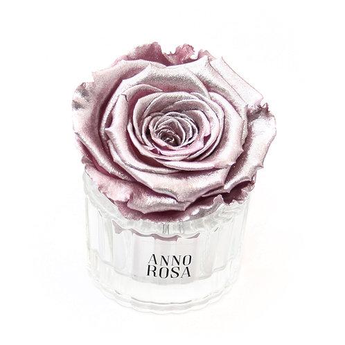 ELEGANT INFINITY ROSE - METALLIC PINK