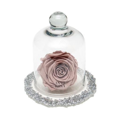 DIAMANTE BELLE SINGLE INFINITY ROSE - MINK