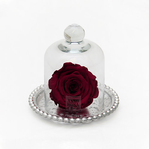 ANTIQUE BELLE SINGLE INFINITY ROSE - WINE