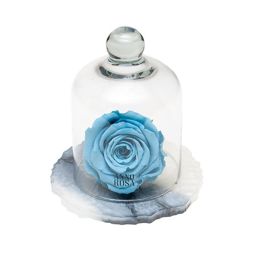 MARBLE BELLE SINGLE INFINITY ROSE - BABY BLUE