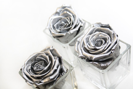 preserved roses, infinity roses, forever roses, interior design, first home, first home ideas, first home decor, metallic roses, forever roses, year long roses, silver rose, metal rose, metallic roses, glass jar