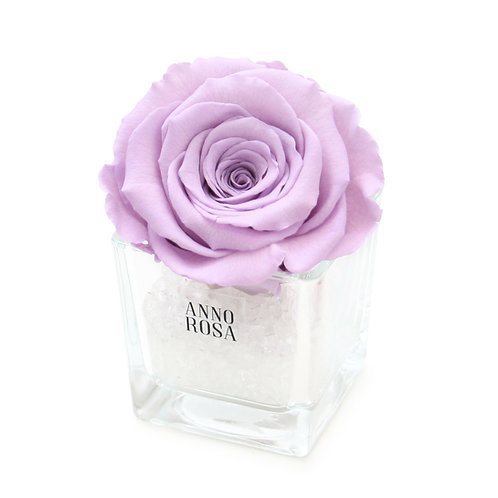 SINGLE INFINITY ROSE - LILAC
