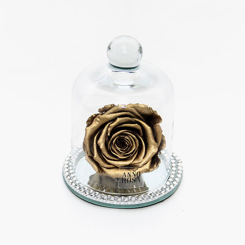 Gold Rose that lasts a year