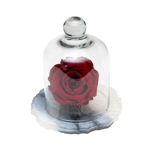MARBLE BELLE SINGLE INFINITY ROSE - WINE