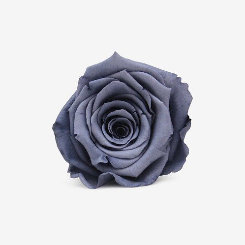Grey Preserved Infinity Rose That Lasts A Year