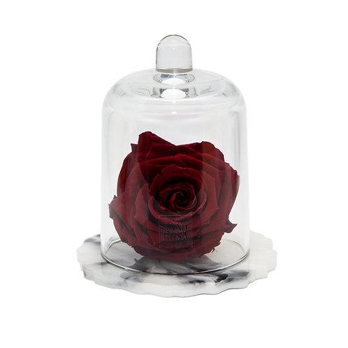 DELUXE WINE MARBLE RESIN BELLE SINGLE INFINITY ROSE