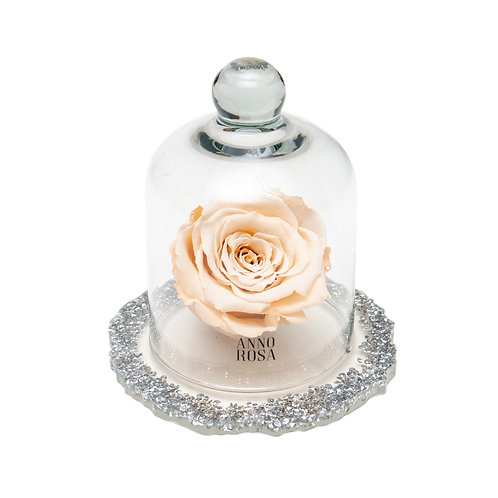 DIAMANTE BELLE SINGLE INFINITY ROSE - CHAMPAGNE