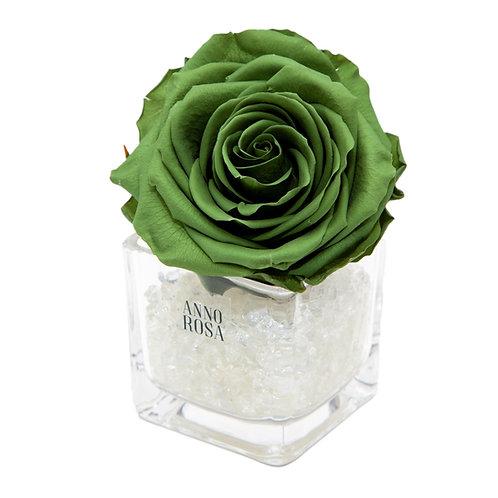 SAGE GREEN INFINITY ROSE & VASE