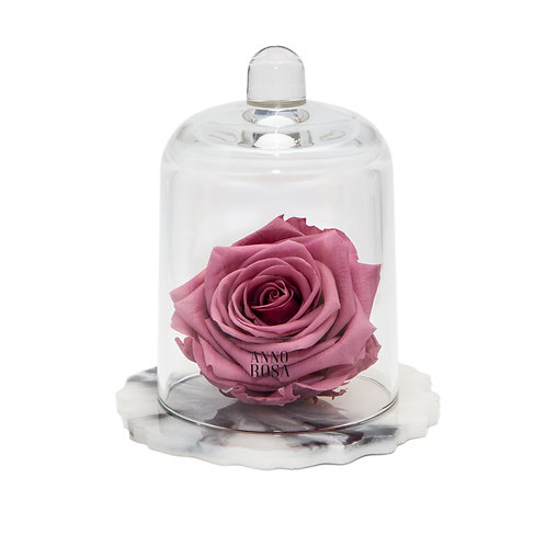 DELUXE CHERRY PINK MARBLE RESIN BELLE SINGLE INFINITY ROSE
