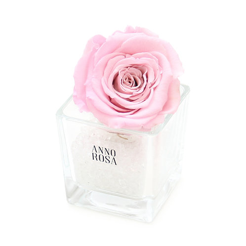 """""""BABY GIRL"""" BIRTH COLLECTION - SINGLE PINK ROSE"""