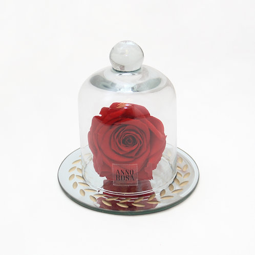 Red Eternal Preserved Rose that lasts a year