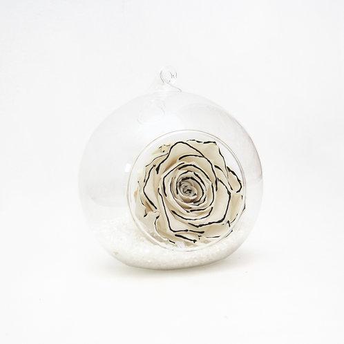Zebra Infinity Rose in Bauble